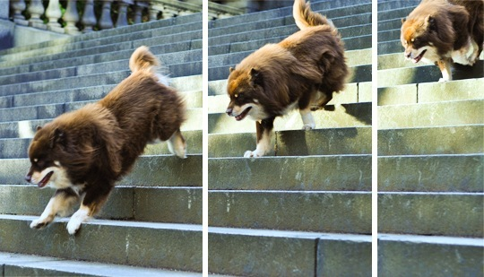 20110920-stairs-ii