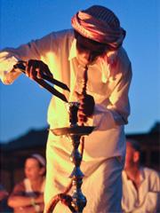 Bedouin nights