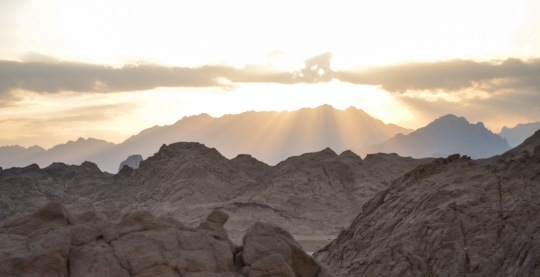 Thankfifi-Bedouin-Nights-17