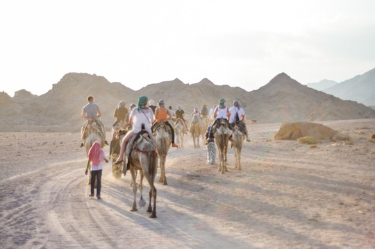 Thankfifi-Bedouin-Nights-8