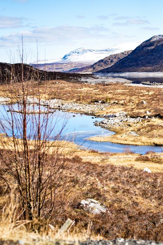 Thankfifi - Roadtrip in the Scottish Highlands-13