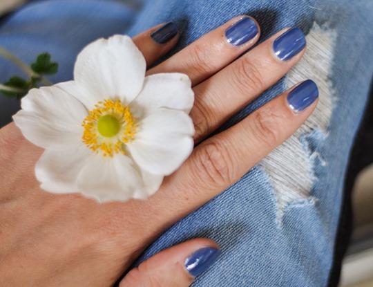 Thankfifi- Aloha blue-1