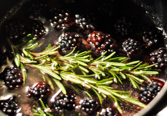 Thankfifi- Blackberry rosemary collins-1-ii