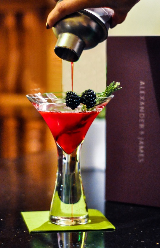 Thankfifi- Blackberry rosemary collins-5-iii