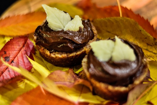 Thankfifi- Chocovocado tarts-12
