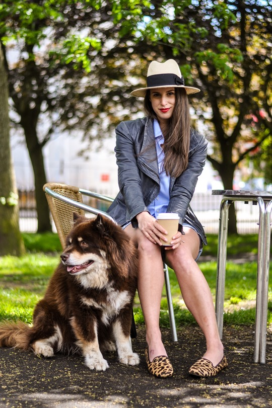 Thankfifi- City living with a dog-2