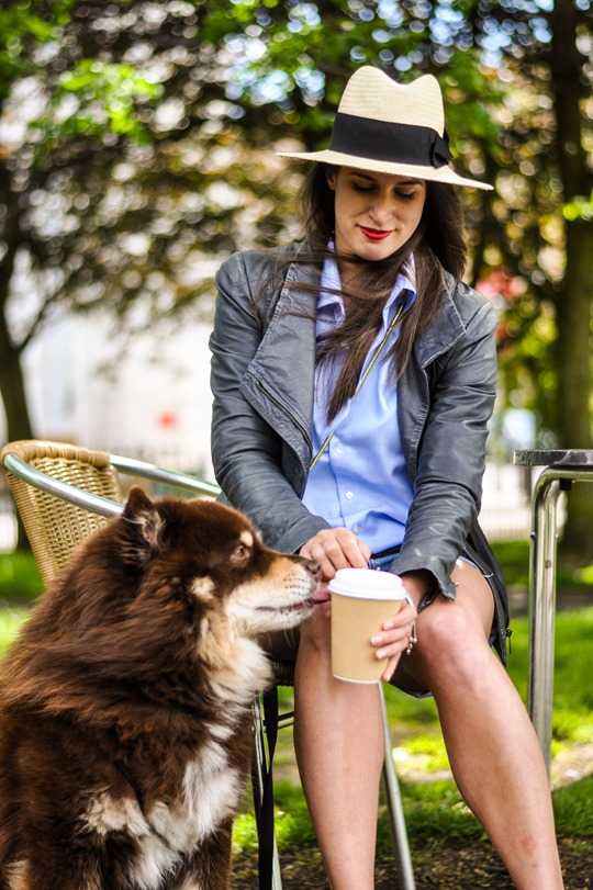 Thankfifi- City living with a dog-4