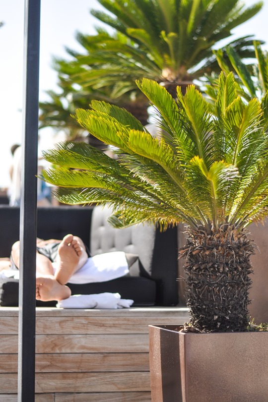 Thankfifi- Grand Hotel Central, Barcelona - rooftop pool Sky bar-2
