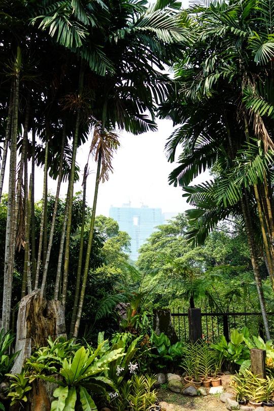 Thankfifi- Kuala Lumpur Orchid Park