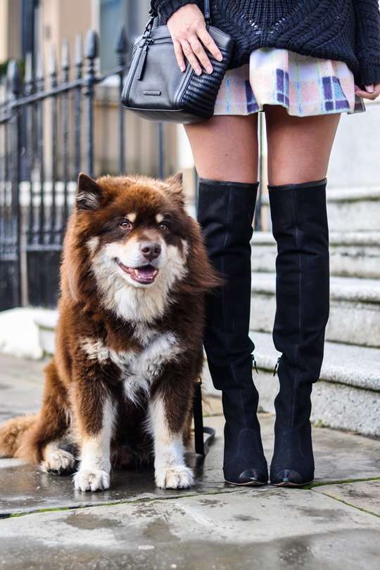 Thankfifi- Finders Keepers Strange Fire Tartan Creampuff dress w Sophia Webster over knee boots-10