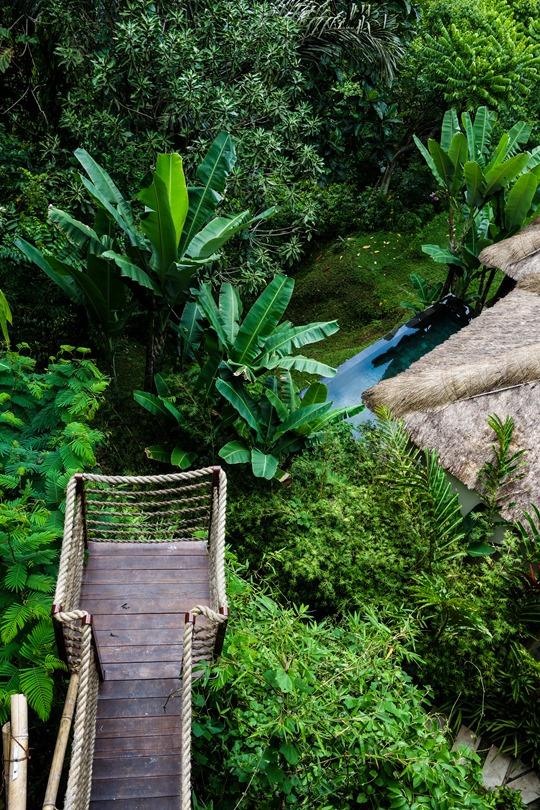 Thankfifi- Hanging Gardens bali pool-3