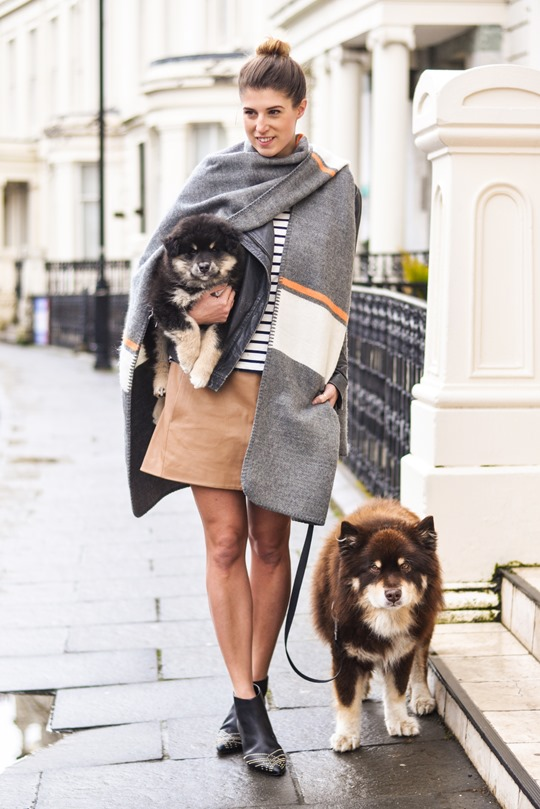 Thankfifi- Topshop blanket cape & a Finnish Lapphund puppy-2
