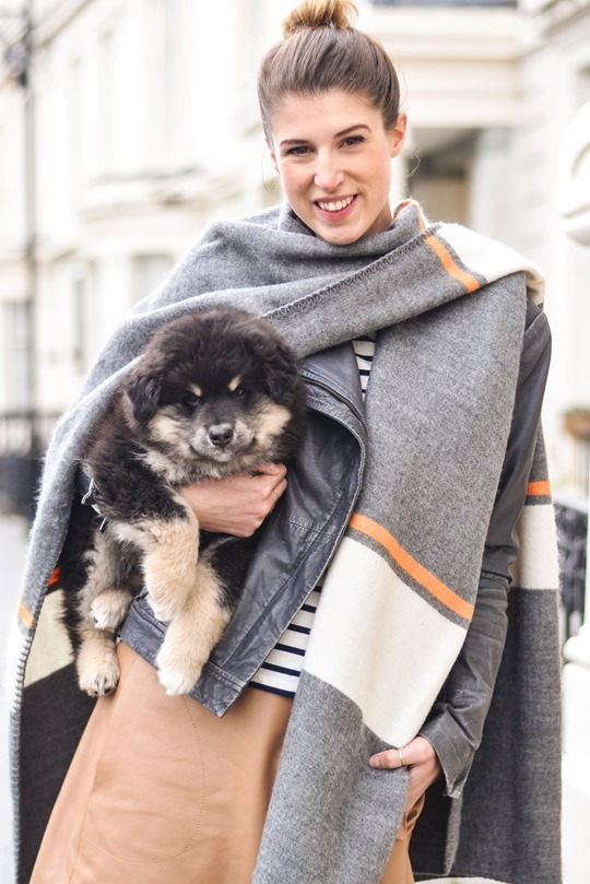Thankfifi- Topshop blanket cape & a Finnish Lapphund puppy-4
