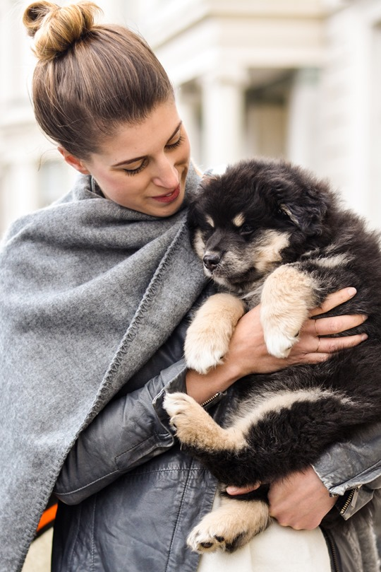 Thankfifi- Topshop blanket cape & a Finnish Lapphund puppy-6
