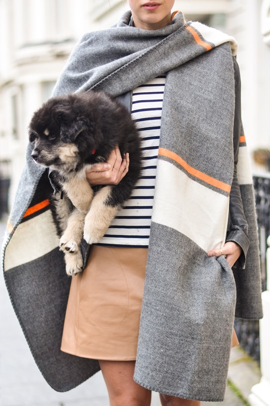 Thankfifi- Topshop blanket cape & a Finnish Lapphund puppy-7