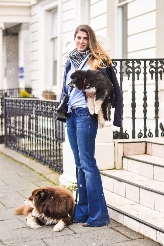 Thankfifi- Flares & layers streetstyle w the Finnish Lapphund puppy-2