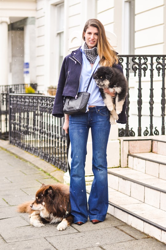 Thankfifi- Flares & layers streetstyle w the Finnish Lapphund puppy