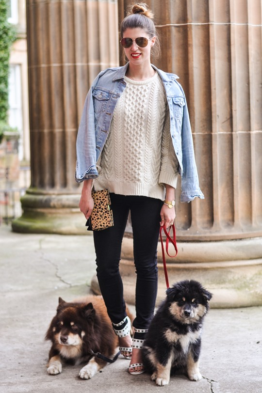 Thankfifi- Gant Rugger cable knit jumper & the Zac Posen leopard bow clutch-2