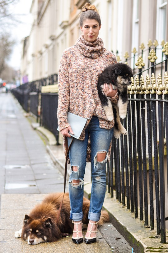 Thankfifi- Glasgow street style with the Finnish Lapphund furries