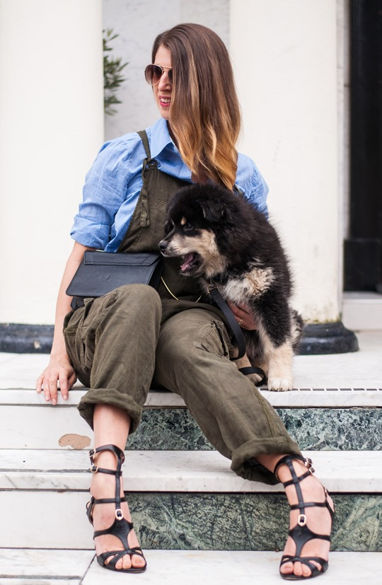 Thankfifi- Khaki overalls & the cutest puppy in the world-15