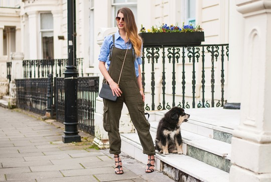 Thankfifi- Khaki overalls & the cutest puppy in the world-4