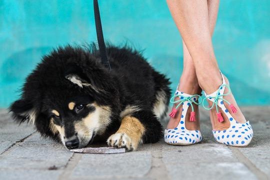 Thankfifi- Boden Alice polkadot high heels-23