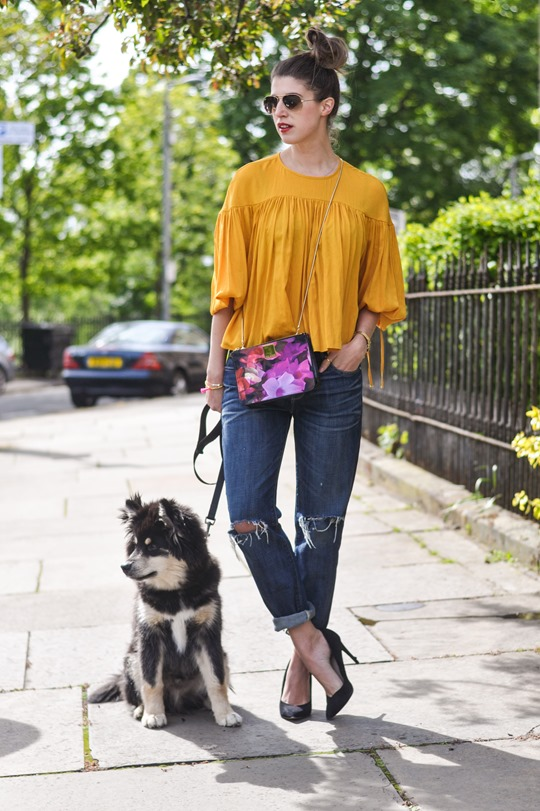 Thankfifi- H&M Trend yellow balloon sleeve blouse & the Finnish Lapphund puppy-2
