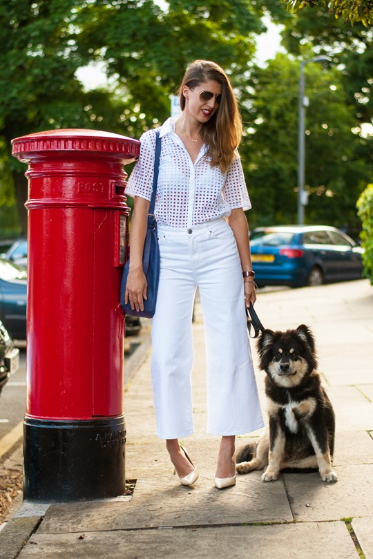 Thankfifi- J Crew Raynor jeans & the finnish lapphund puppy-4