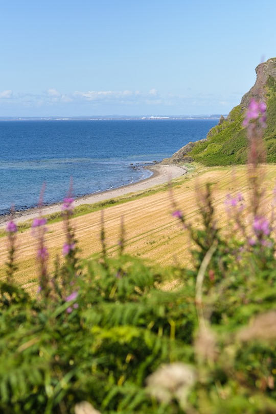 Thankfifi- Beautiful Scottish beach - Heads of Ayr-2
