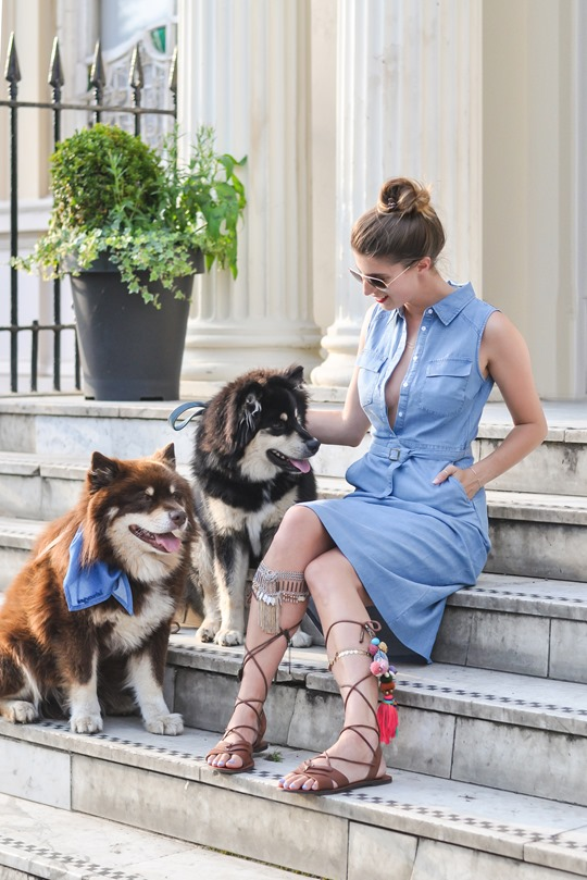 Thankfifi- Denim & dogs street style - Oasis #wagyourtail-7
