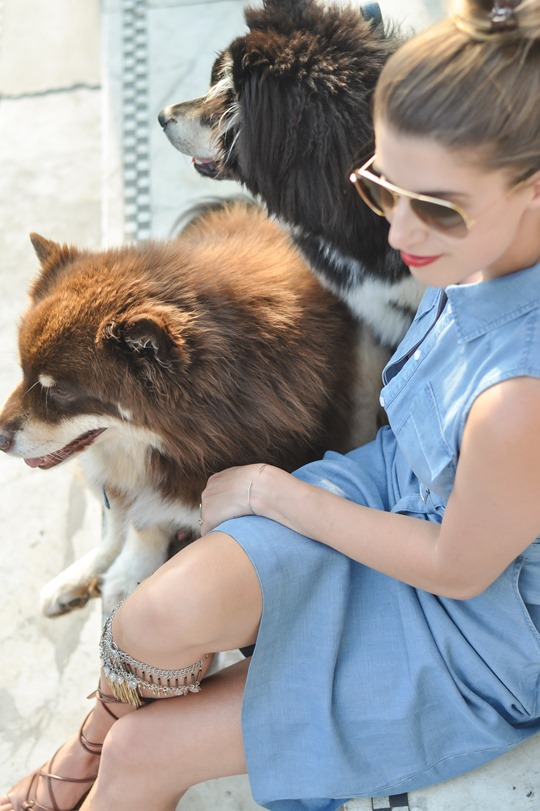 Thankfifi- Denim & dogs street style - Oasis #wagyourtail-9