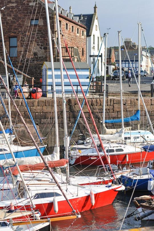 Thankfifi- Lobster Shack, North Berwick-2