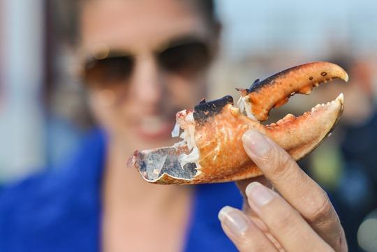 Thankfifi- Lobster Shack, North Berwick-4