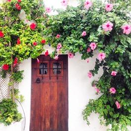 Thankfifi - Ibiza old town doorway