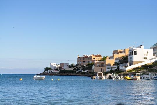 Thankfifi- Talamanca, Ibiza