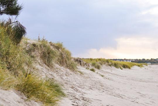Thankfifi- Culbin Sands, Nairn beach-3