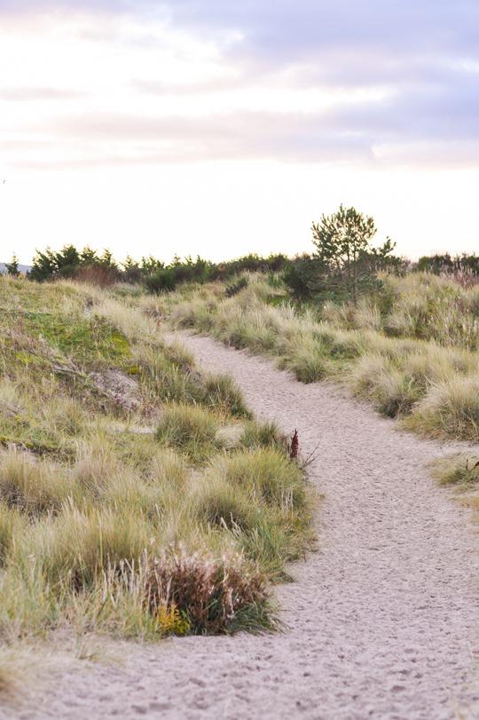Thankfifi- Culbin Sands, Nairn beach