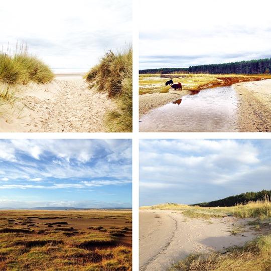 Thankfifi---Culbin-sands-beautiful-beach
