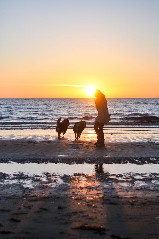 Thankfifi- Troon beach at sunset in Old Harry & Emu Australia-18