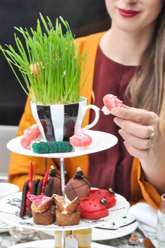 Thankfifi_Mad-Hatters-Afternoon-Tea_The-Sanderson-London-16
