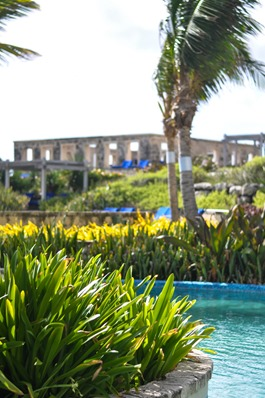 Thankfifi - The Crane Resort, Barbados-8