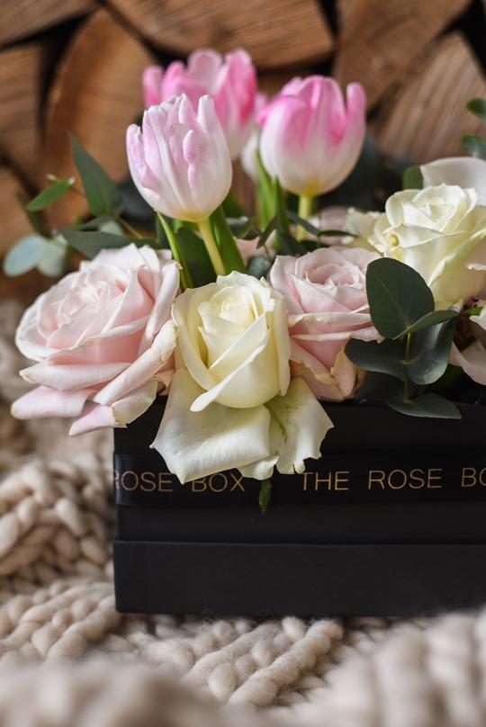 Thankfifi- The Rose Box, Glasgow