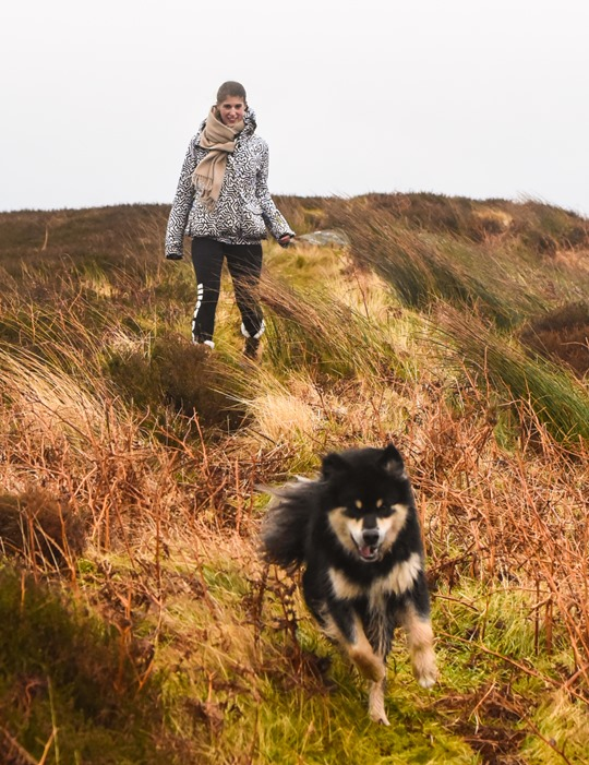 Hiking Scotland from Portavadie to Low Stillaig with the Finnish lapphunds - Thankfifi-3.