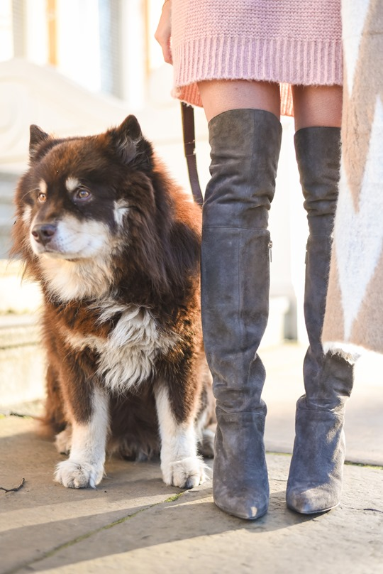 Ted & Muffy Acantha over the knee grey suede boots - winter streetstyle by Thankfifi-2