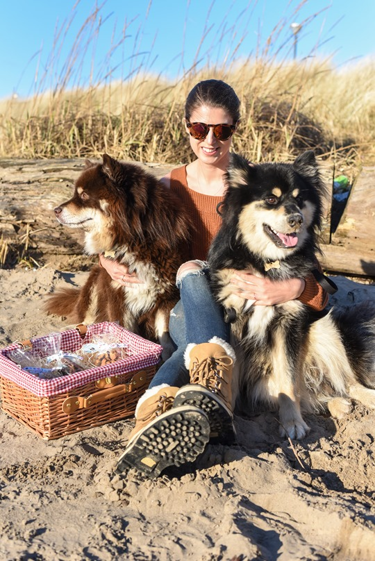 Troon beach with the Finnish Lapphunds - Thankfifi-5