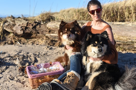 Troon beach with the Finnish Lapphunds - Thankfifi-6