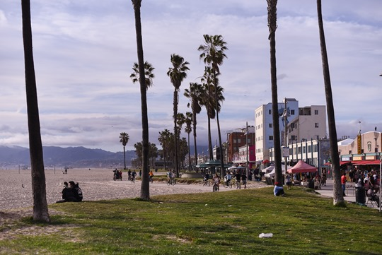 Venice Beach - Thankfifi LA Travel Diary-2