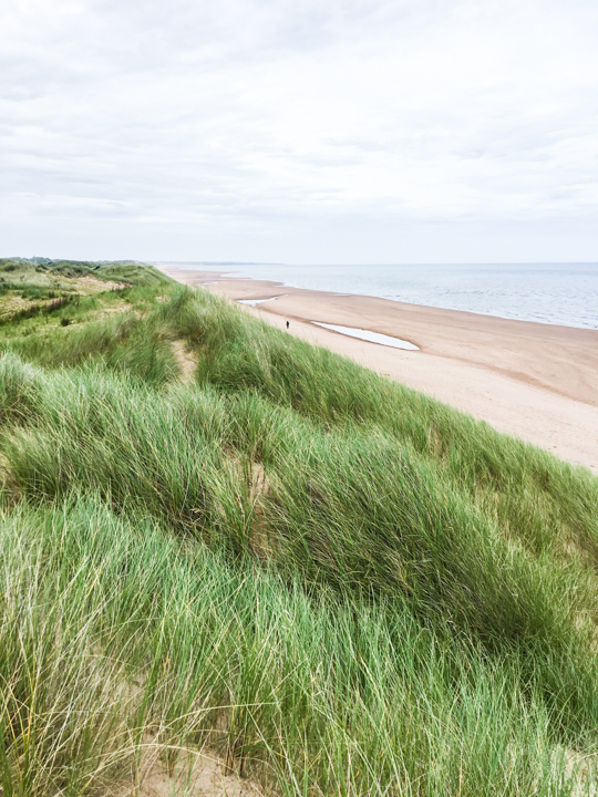 Sand Dunes, Balmedie beach, Aberdeen - Thankfifi Scottish travel blog-3