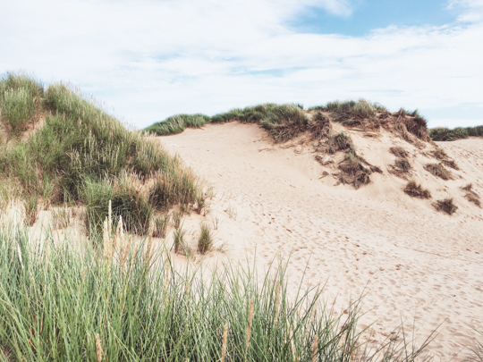 Sand Dunes, Balmedie beach, Aberdeen - Thankfifi Scottish travel blog