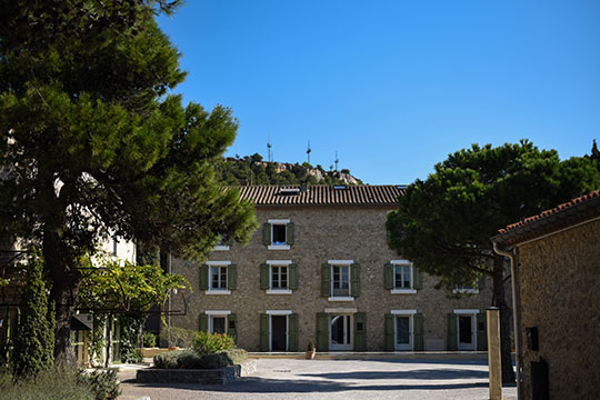 chateau-lhospitalet-vineyard-harvest-festival-thankfifi-scottish-travel-blog-10